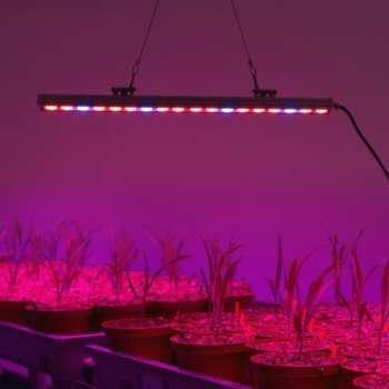 14W T5 LED Lampa Augu Audzēšanai 1200mm Sarkans: 660nm Zils: 460nm