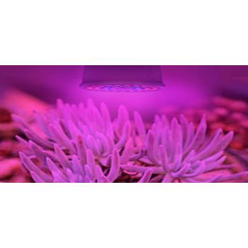 3W E27 LED Spuldze Augu Audzēšanai Pilna Spektra