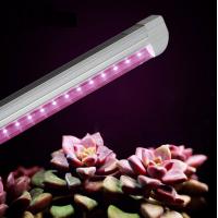 5W T8 LED Lampa Augu Audzēšanai 300mm Sarkans: 630nm Zils: 460nm