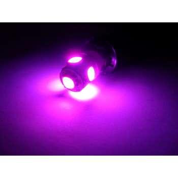 T8,5 8SMD Purple